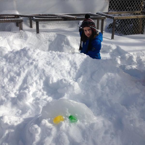 06Feb2015_Snow Fun06