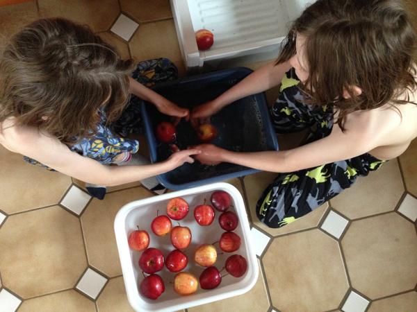 10Feb2015_apple washing_02