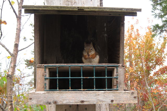 2013Oct26_Point Pleasant Park_08