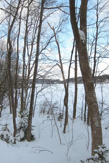 Jan302014_Snowshoeing_04
