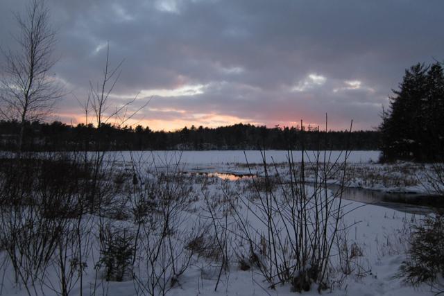 Jan302014_Snowshoeing_09