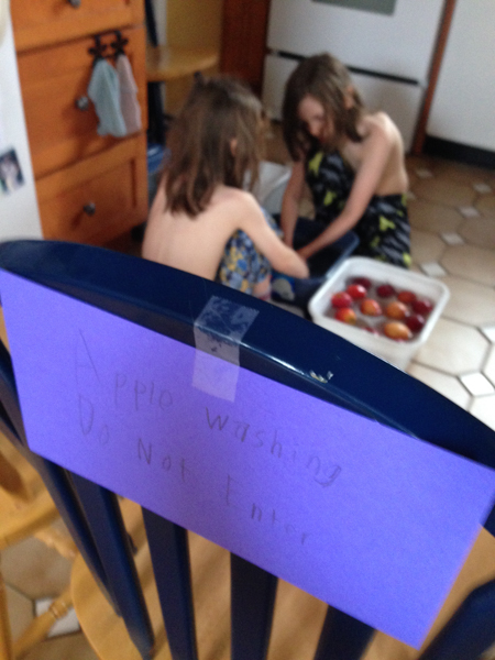 10Feb2015_apple washing_01