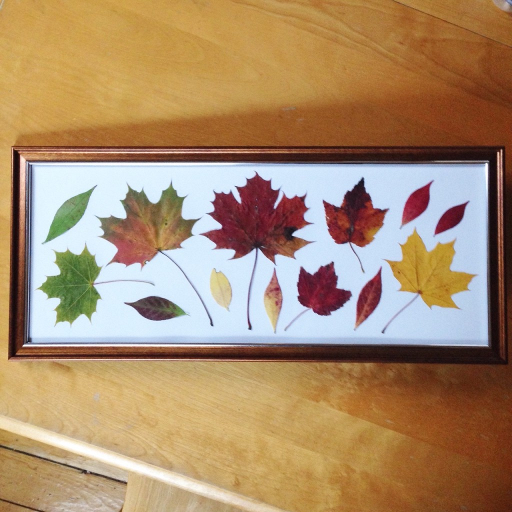 framing leaves